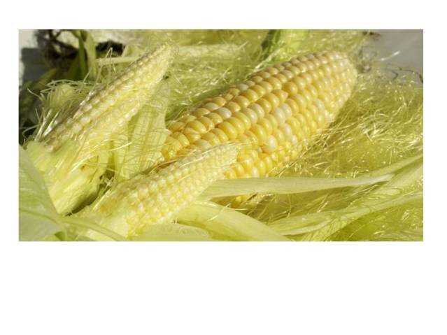Corn with silk